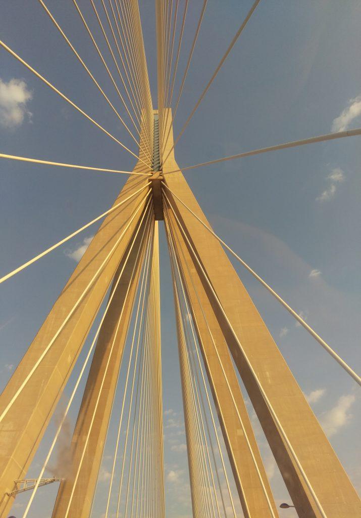 Die fächerförmige Seilanordnung der Brücke