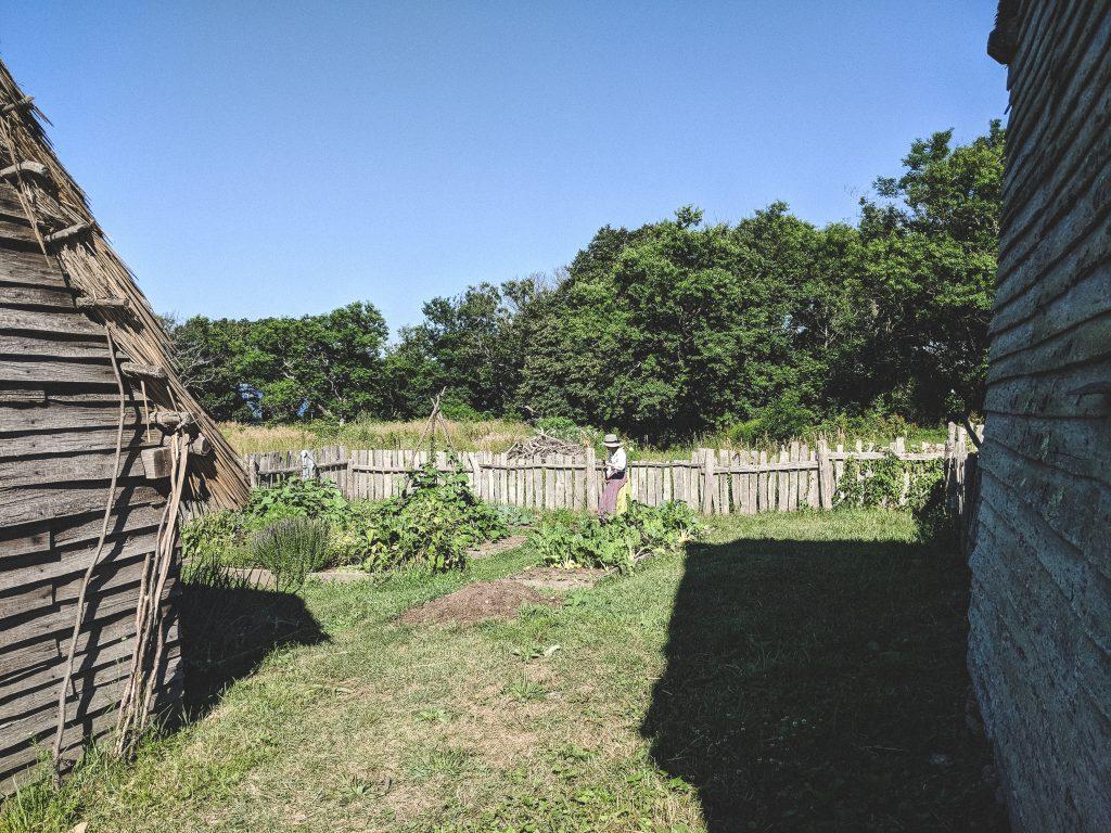 Die Gärten hinter den Häusern