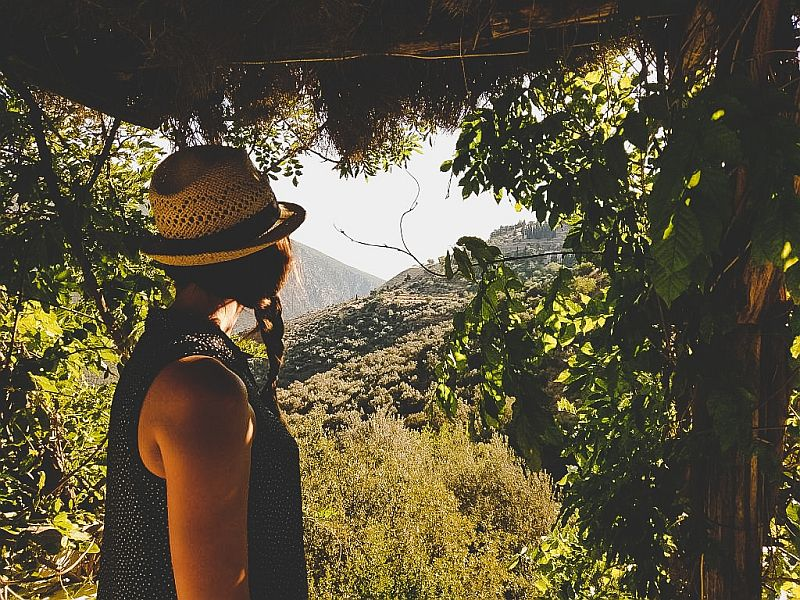 Im Parnassgebirge
