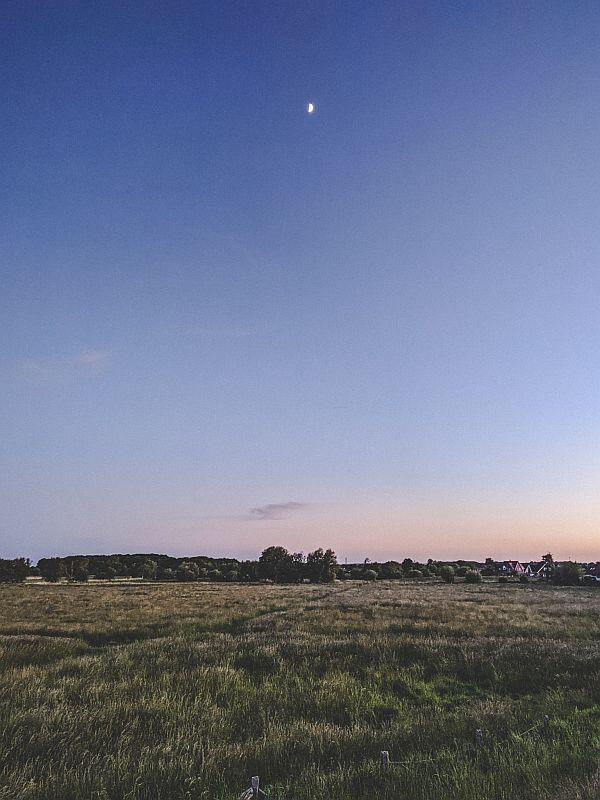 Blick auf das weite Feld zur Abenddämmerung