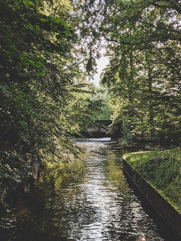 Zeitz Tipps - Natur im Zeitzer Schlosspark