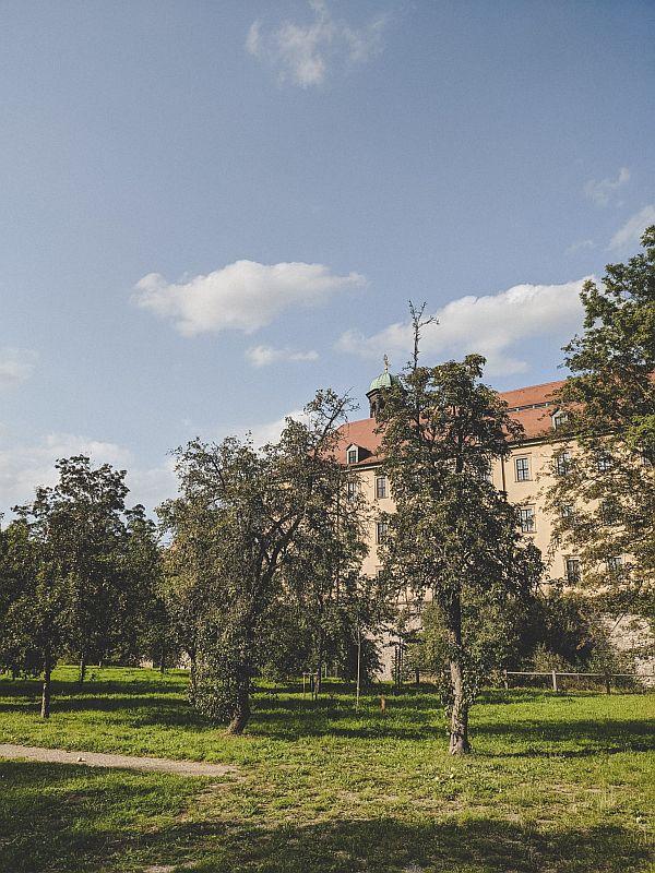 An der Streuobstwiese im Zeitzer Schlosspark