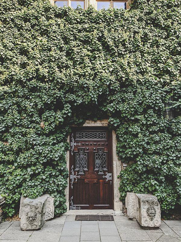 Prächtig bepflanzte Tür am Merseburger Schloss