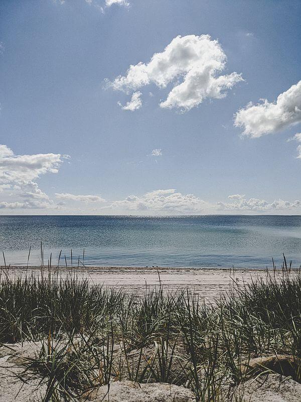 Seeland Roadtrip - Einsamer Strand auf Seeland