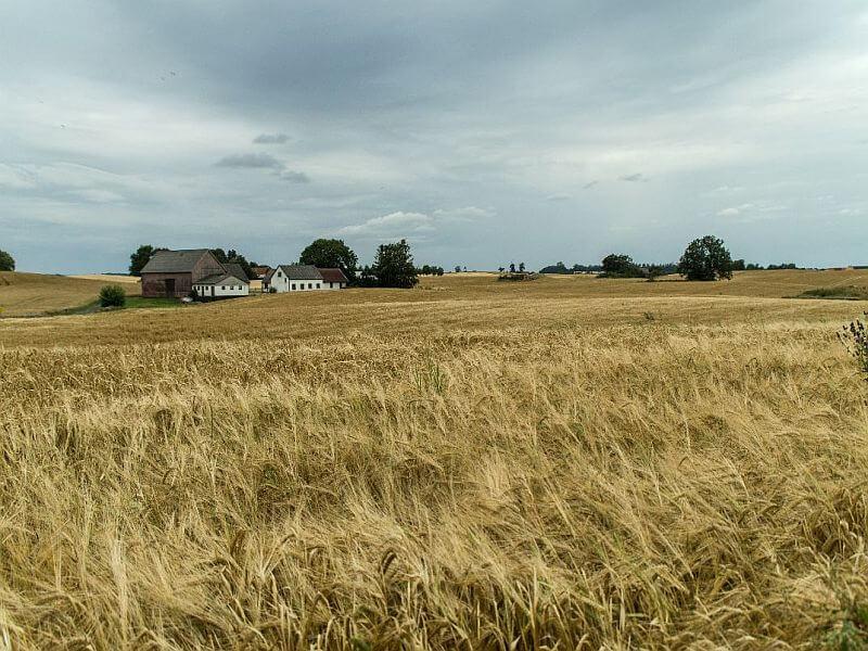 Landschaft in Schonen