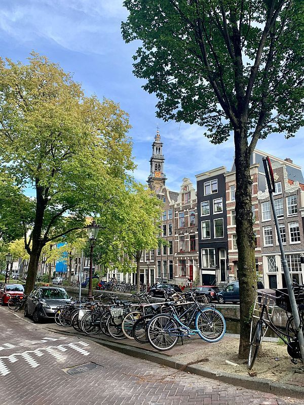 Amsterdam Highlights - typische Häuserfronten