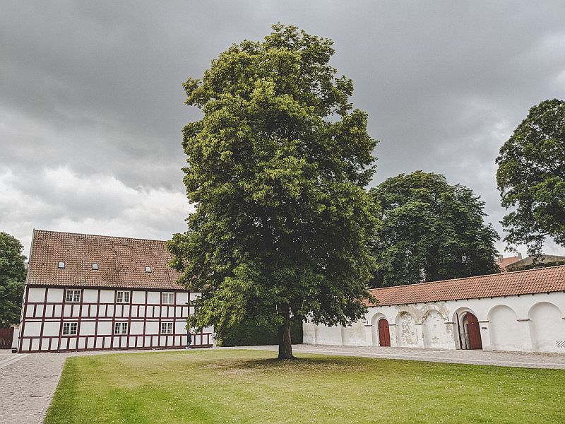 Das Schloss Aalborghus in Aalborg