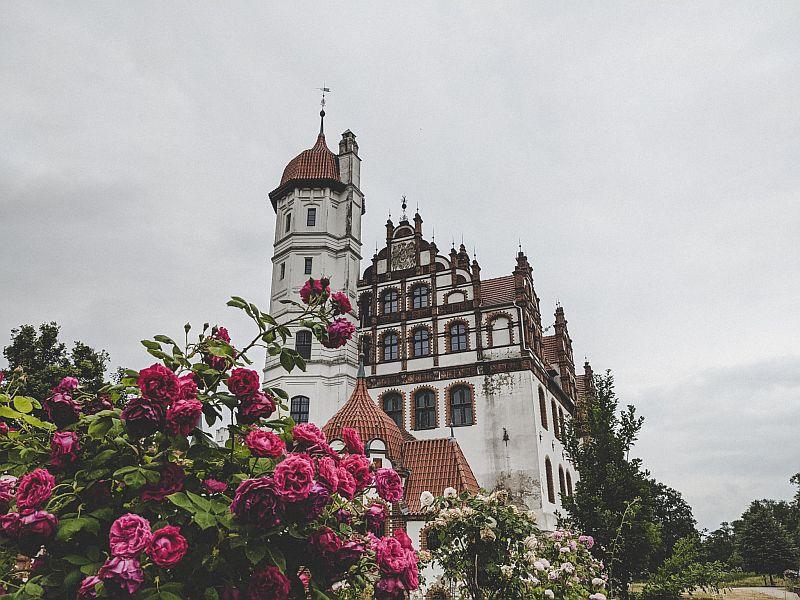 Ausflugsziele an der Mecklenburgischen Seenplatte - Schloss Basedow